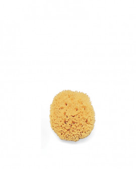 NATURAL SPONGE - Small